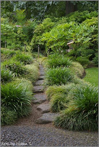 Japanese Gateway w Królewskich Ogrodach Botanicznych.