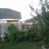 Gardening 2011 - IMG_20111019_185330.jpg