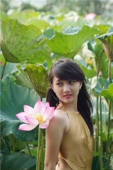 Chụp ảnh sen Hà Nội