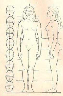 Grupo de estudos: Figura Humana CORPO+FEMININO