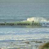 _DSC7375.thumb.jpg
