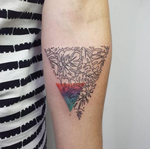 triangular_pedaço_de_folha_de_palmeira