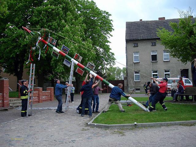 erster Anhalter Maibaum028.jpg