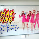 shak-king at the N Seoul tower in Korea in Seoul, Seoul Special City, South Korea