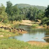 Kruger park jour 1