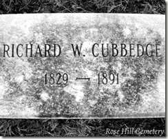 cubbedge16976ph