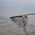20140705_Fishing_Prylbychi_051.jpg