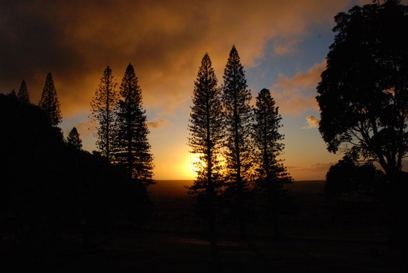 hawaii - 72.jpg