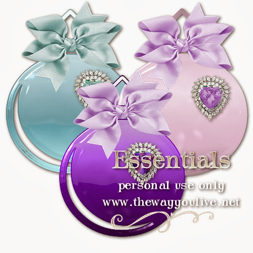 TWYL-Ornaments.jpg