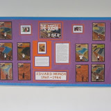 The scream Display Y6