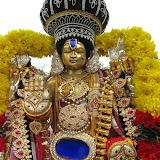 Brahmotsavam Day 8