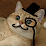 Incredible Catfish's profile photo