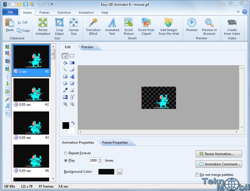 Easy Gif Animator Pro v7.0.0.55 Full İndir