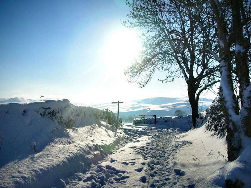 SnowLH1