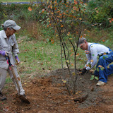 Bethabara Planting Day