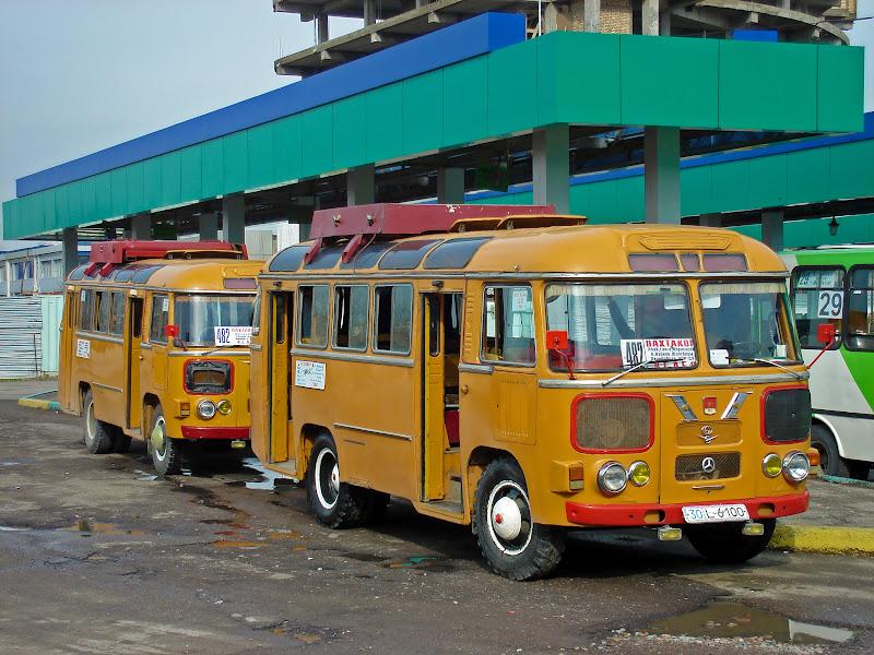 ПАЗики на автостанции метро Пахтакор