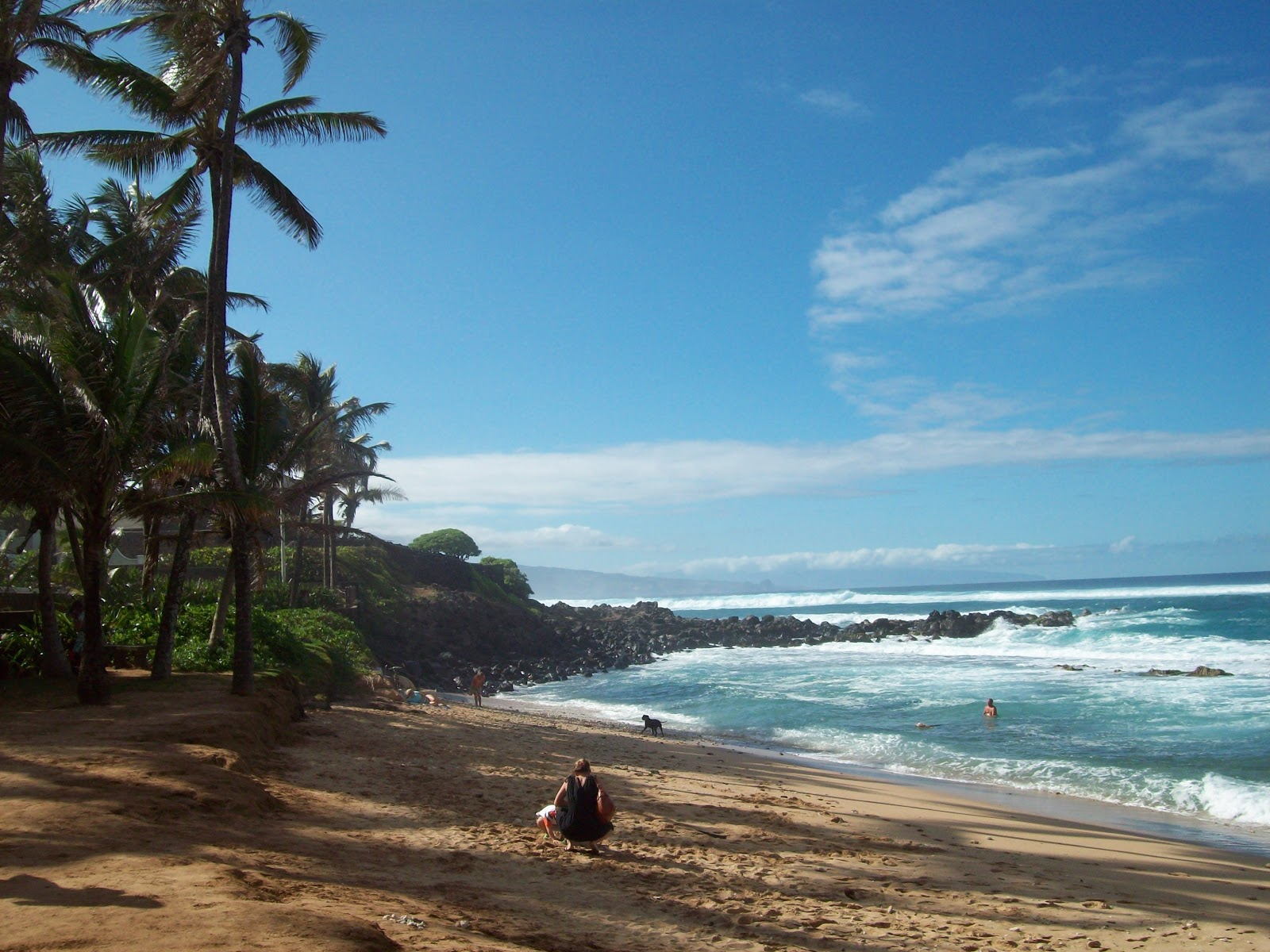 Hawaii Day 8 - 114_2222.JPG