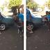 Vídeo: cachorro ajuda a empurrar carro quebrado na rua