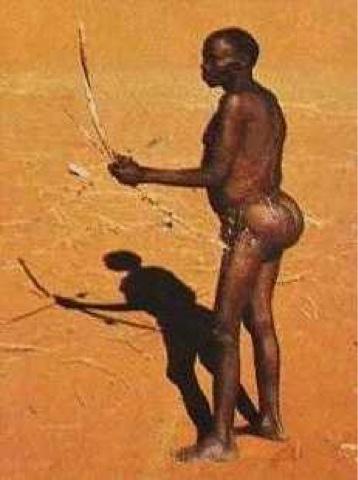поудобнее большие ягодицы большая грудь узкая талия африканские племена бушмены нельзя