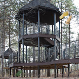 treehouse_MG_2472-copy.jpg