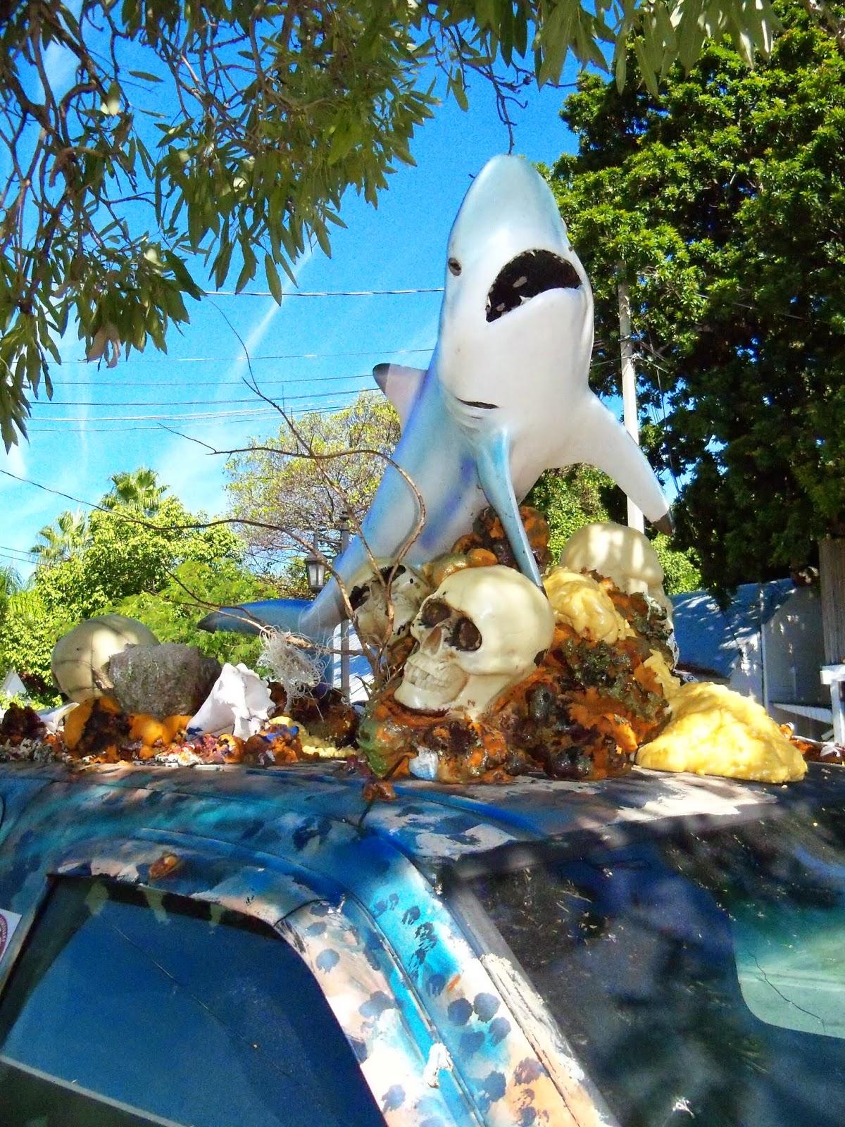Key West Vacation - 116_5478.JPG
