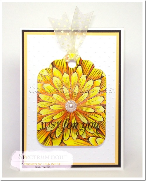 Colourista Foil - Just for You (2)