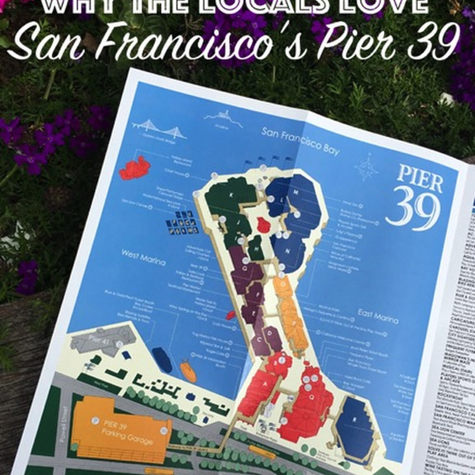 Why the locals love San Francisco's Pier 39