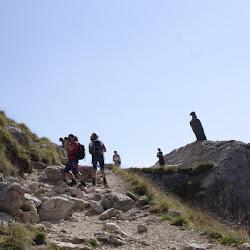 Wanderung Hirzelweg Rosengarten 08.09.16-7111.jpg