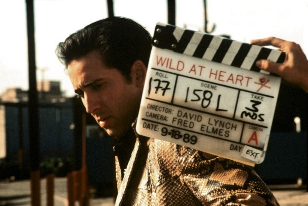 david-lynch-cage-wild-at-heart