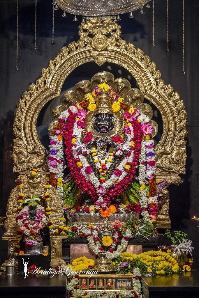 ISKCON Mayapur Deity Darshan 31 Dec 2016 (16)