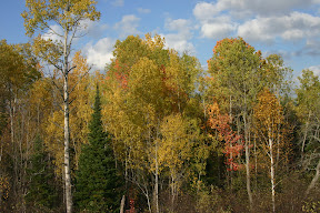 Autumn colours in northern Ontario
