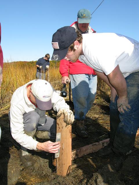 Guilford Salt Meadow Sanctuary Osprey Platform - sfs%252C10-25-09%2Bosprey%2Bplatform%2Binstall%252C079.JPG