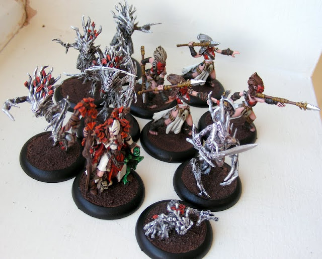 Maxxev's Finished Warbands DSCN3072