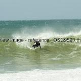 _DSC9593.thumb.jpg