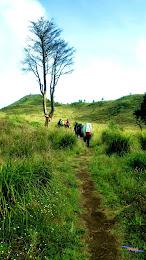 ngebolang gunung prau dieng 13-14-mei-2014 pen 034