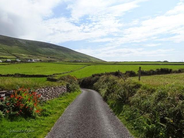 passeando - Passeando por caminhos Celtas - 2014 - Página 3 1%2B%2848%29