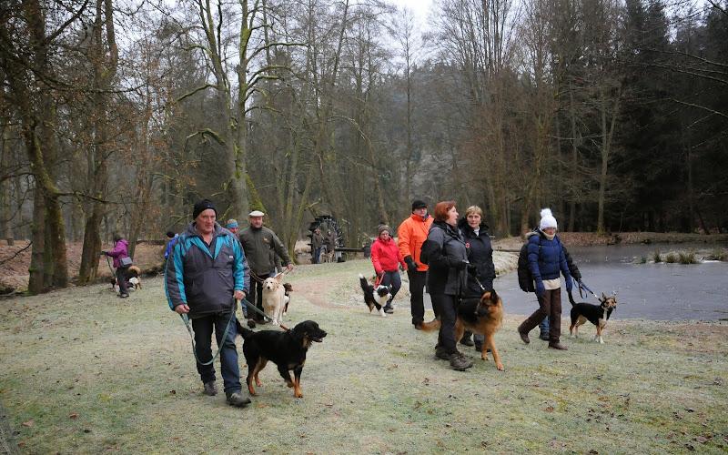 20140101 Neujahrsspaziergang im Waldnaabtal - DSC_9900.JPG