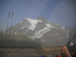 Shuksan from the tent. Lots of mossies out there.