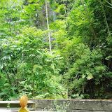 06-25-13 Annini Reef and Kauai North Shore - IMGP9346.JPG