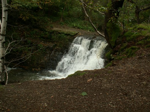 3C na wycieczce do wodospadu na Iwełce - PICT0508_1.JPG