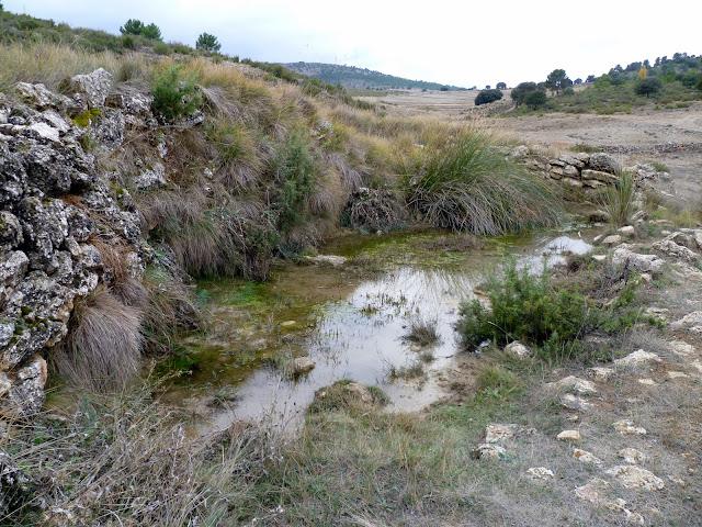 Fuente del Corcho