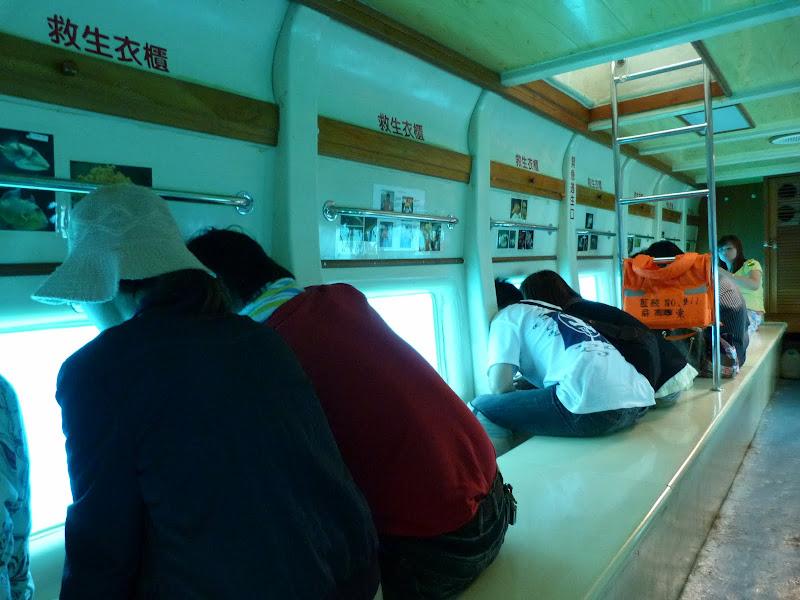 bateau à fond (bordés) dit de verre. vu des tortues énormes