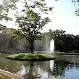 yoyogi park in Shibuya, Tokyo, Japan