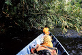 Heading downstream near Clearwater