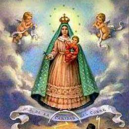 user Lourdes Arucas apkdeer profile image