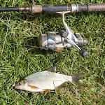 20140825_Fishing_Lysyn_043.jpg