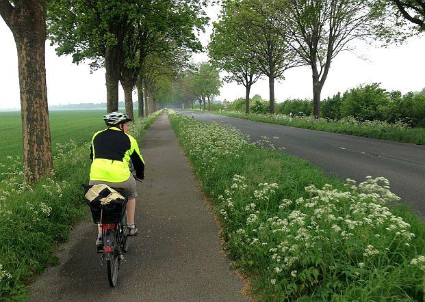 Miri on the Bike auf einer Allee