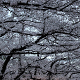2014 Japan - Dag 1 - marjolein-IMG_0186-0113.JPG