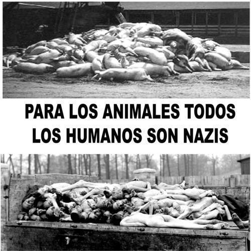 Holocausto animal