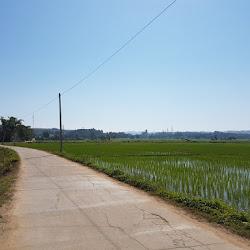 Thailand 2017 - Phayao, Phu Langka, Chai Prakarn